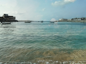 sea alex